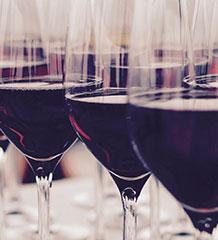 Découvrez nos vins de Bordeaux