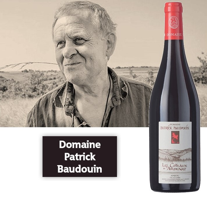 Domaine Patrick Baudouin